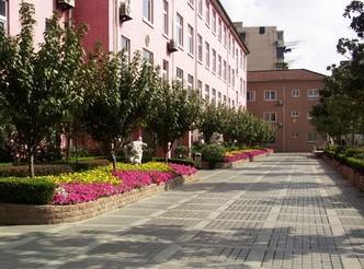 上海市民办扬波教学质量中学学习初中互助图片