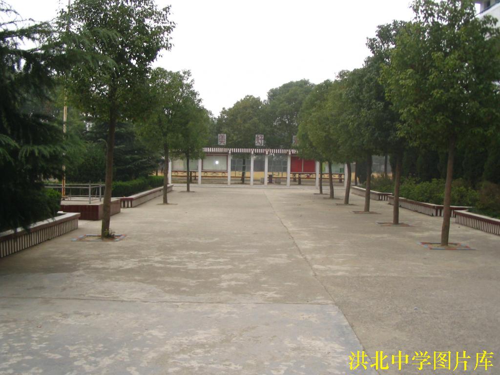 武汉市蔡甸区洪北中学