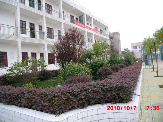 蔡甸区桐湖学校初中部