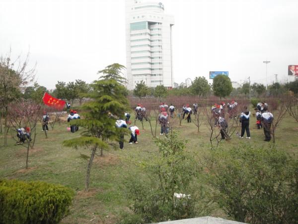 武汉市新洲区实验中学