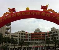 深圳市龙岗区亚迪学校