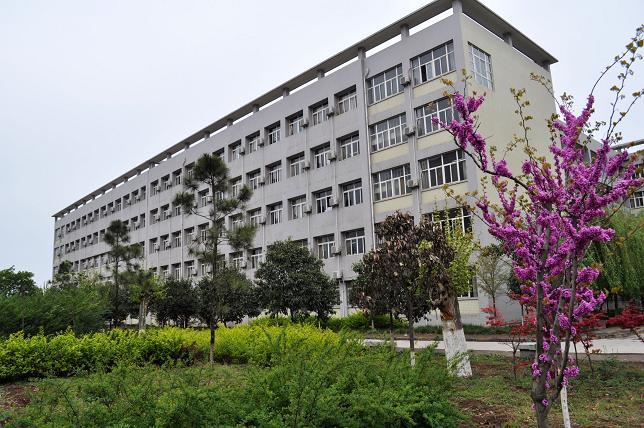 长安区第二中学