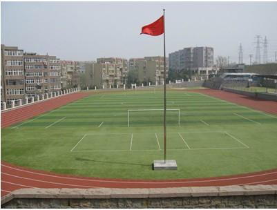 山东省青岛市第五十六中学