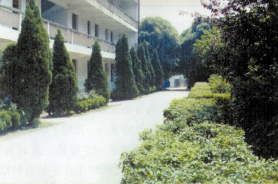 武汉市江夏区第三中学